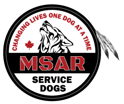 https://courageouscompanions.ca/wp-content/uploads/2019/02/MSAR_Logo-Final_x250.png
