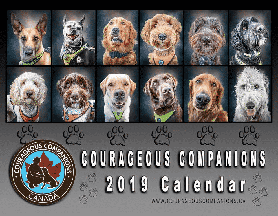 Order Your 2019 Courageous Companions Calendar